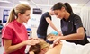 A2Z Health Massage Therapy School - Multiple Locations: Five-Hour Intro to Swedish Massage Class for One or Two at A2Z Health Massage Therapy School (Up to 61% Off)