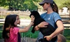 Stamford Museum and Nature Center - Stamford: Family-Plus Membership or a Family Museum Membership to Stamford Museum & Nature Center (Up to 51% Off)
