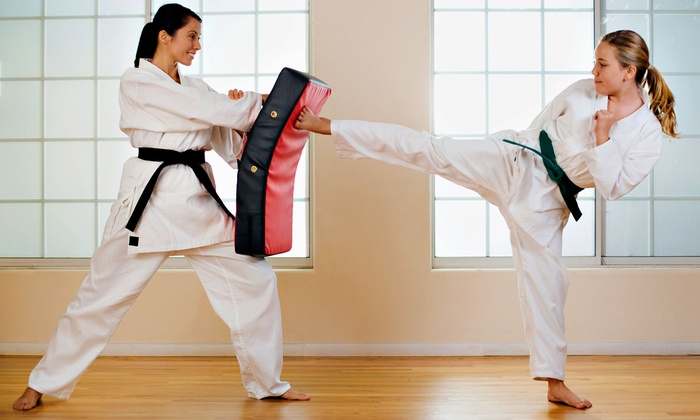 Life Skills Martial Arts - Northeast Tampa: 10 or 16 Martial-Arts or Kickboxing Classes at Life Skills Martial Arts (Up to 88% Off)