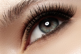 Jennifer Lee Beauty: One Full Set of Custom Eyelash Extensions with Optional Refill at Jennifer Lee Beauty (Up to 75% Off)