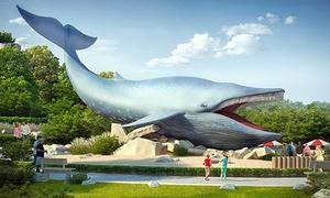 Ocean Park: Pomysł na nudę – Ocean Park we Władysławowie: 2 bilety za 47,99 i więcej opcji (do -42%)