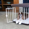 Carlson Combi-Crate for Pets