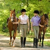 Up to 52% Off Horseback Riding