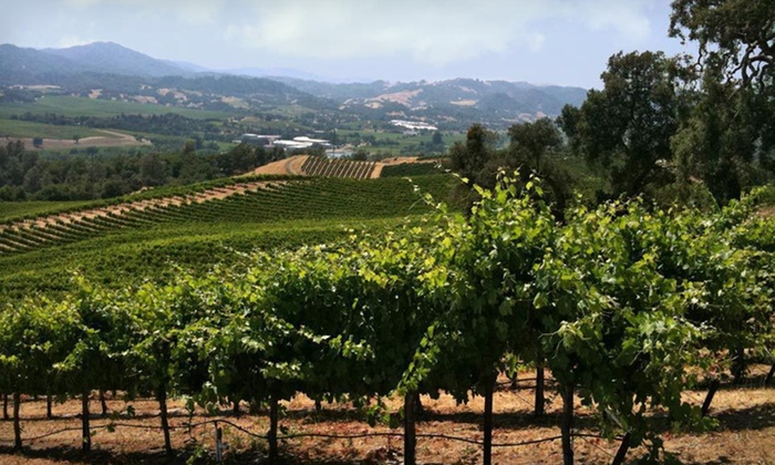 Winery Tour - Linda Vista: Five-Day, Four-Night Napa Valley Wine Tour from Authentic Wine Country