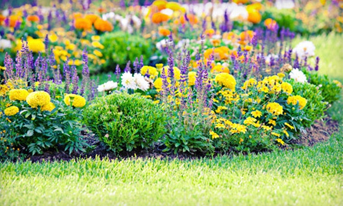 Jefferson Feed - New Orleans: $10 for $20 Worth of Lawn, Garden, and Pet Supplies at Jefferson Feed