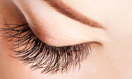 Full Set of Individual Lashes with Touchup, or Full Set of Cluster Lashes at 3D Wonderland (Up to 55% Off)