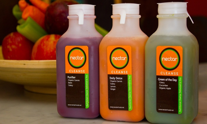 Nectar - North Decatur: One- or Three-Day Juice Cleanse from Nectar (50% Off)