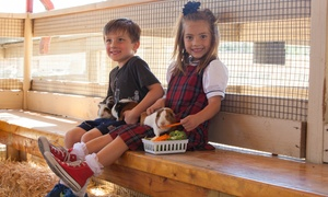 Zoomars: $24 for Petting-Zoo Entries for Four plus Two Feed Baskets at Zoomars ($48 Value)