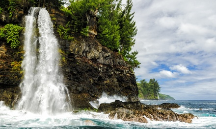 Three-Hour Waterfall  and Dolphin Tour Via Boat for Two or Four from Lava Ocean Tours (30% Off)