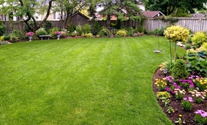 Beat The Weeds Organic Based Lawn Care: $39 for $87 Groupon — Beat The Weeds Organic Based Lawn Care