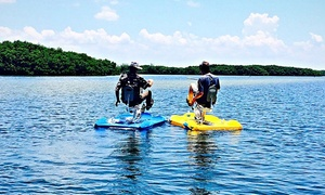 Bikes On The Bay: Up to 52% Off Water Bike Rental  at Bikes On The Bay