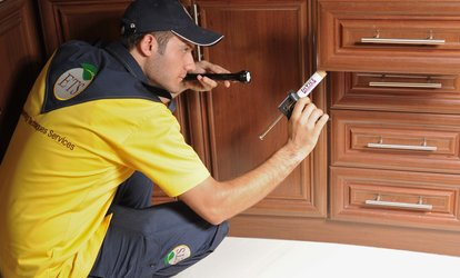 image for Pest Control for Up to Five Rooms with Engineering Techniques Services (Up to 63% Off)