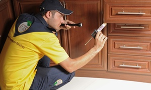 Engineering Techniques Services: Pest Control for Up to Five Rooms with Engineering Techniques Services (Up to 63% Off)