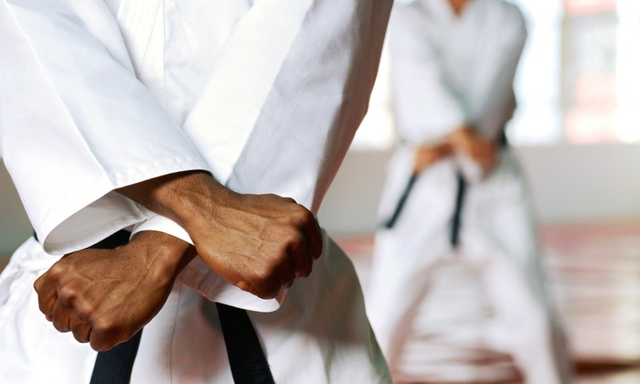 S. Pavlou Tae Kwon Do - Montville: One Month of Classes for One or Two at S. Pavlou Tae Kwon Do (Up to 92% Off)
