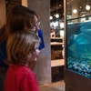 Up to Half Off Tickets to The Mobius Science Center