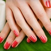 Half Off Nail Services in Maple Grove