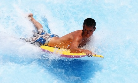 Two or Four Entry Tickets at The Wave Waterpark (Up to 47% Off)