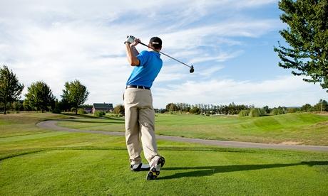 Golf-Schnupperkurs für 1 oder 2 Personen, opt. mit 4 Wochen Anlagenutzung, bei Die Golfübungsanlage (bis zu 71% sparen*)