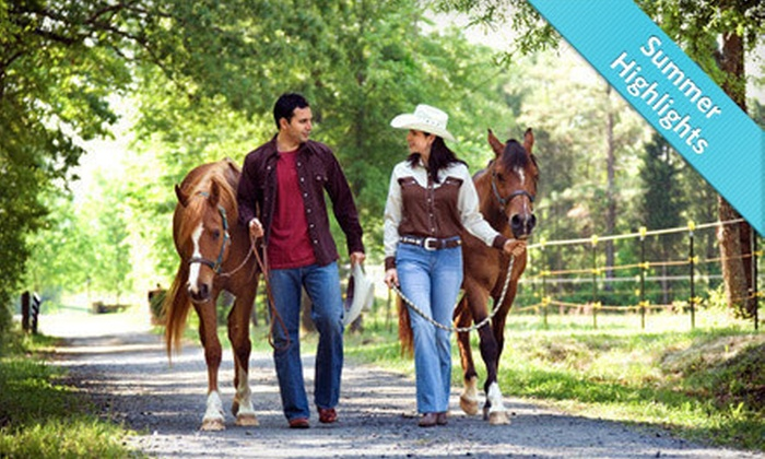 Young's Paso Fino Ranch - Reddick-McIntosh: $48 for a One-Hour Horseback Trail Ride for Two at Young's Paso Fino Ranch ($96 Value)