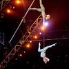 Cirque Musica – Up to Half Off