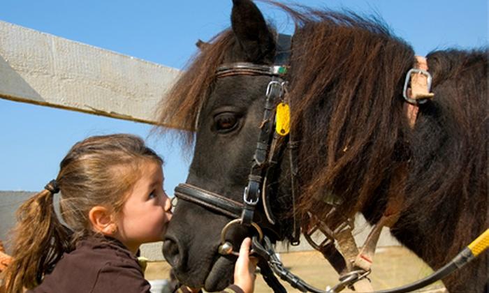 Lemos Farm - Half Moon Bay: $25 for $50 Toward a Pony or Choo-Choo Kids' Birthday Party at Lemos Farm