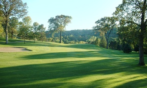 Red Wing Golf Club: 18-Hole Round of Golf for Two or Four with Cart  Rental at Red Wing Golf Club (53% Off)