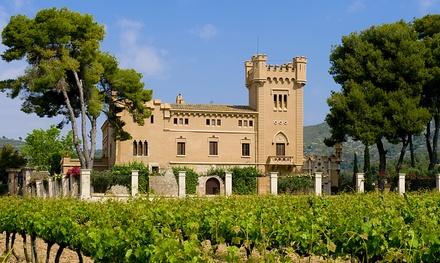 Visita con cata de vinos y opción a maridaje para 2, 4 o 6 personas en Torre del Veguer (hasta 61% de descuento)