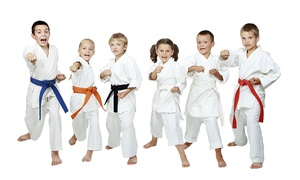 PDK Dojo Martial Arts School: Karate Classes for One ($19), Two ($35) or Three Months ($55) at PDK Dojo Martial Arts School (Up to $360 Value)
