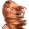 Cut, Blow-Dry and Condition, £17
