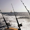 50% Off Half-Day Fishing Trip
