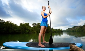 Sunrise Paddleboards: Island City ECO Paddle Lesson and Tour for One or Two from Sunrise Paddleboards (Up to 63% Off)