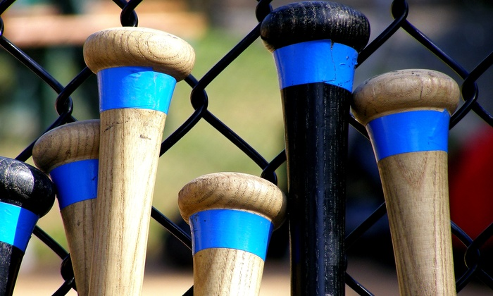We Drop Bombs Baseball - Medford: One or Three 60-Minute Batting-Cage Sessions at We Drop Bombs Baseball (Up to 55% Off)