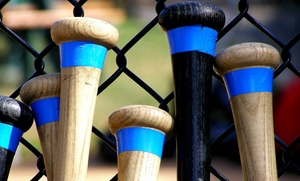 We Drop Bombs Baseball: One or Three 60-Minute Batting-Cage Sessions at We Drop Bombs Baseball (Up to 55% Off)