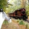 Up to 33% Off Fall Seasonal Train Tours
