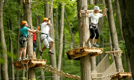 $49 for a Three Hour Zipline and Aerial Course Tour from Treetop Trekking ($72.32 Value)