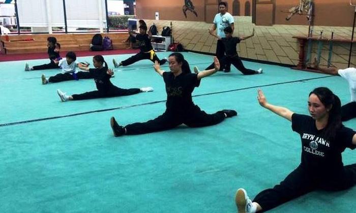 Usa Wuchi Kungfu Academy - Fremont: $39 for $135 Groupon — Modern Wushu Competition Training