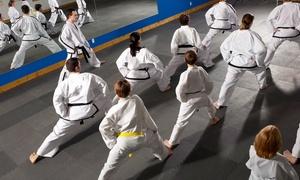 Leejon Taekwondo: One or Three Months of Taekwondo (Up to 69% Off)