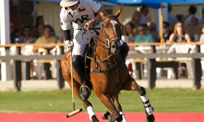 Houston Polo Club - Houston Polo Club: Houston Polo Club Match for Two (Sundays through June 12)