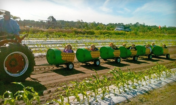 D and D Farms - Palm City: Corn Maze for Two or Four on Friday, Saturday, or Sunday at D and D Farms (Up to 53% Off)