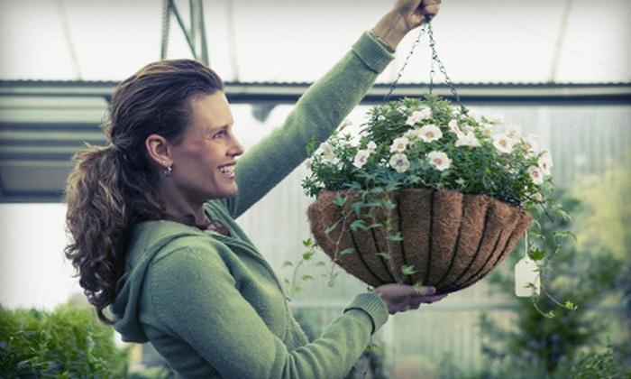 Renee's Greenhouses - Welland: Vegetable Plants or Vegetable-Plant Containers at Renee's Greenhouses (Half Off)