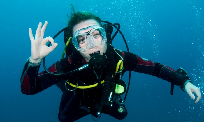 SCUBASTOP - Mansfield: Beginner PADI Open-Water Scuba-Certification for One or Two at SCUBASTOP (Up to 60% Off)