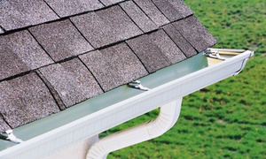 The Gutter Man: $79 for a Gutter, Downspout, and Roof-Debris Cleaning with Roof Inspection from The Gutter Man ($150 Value)