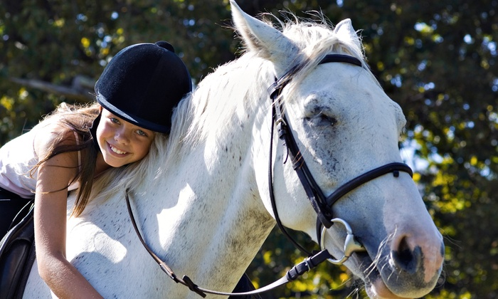 Never Ending Farm - Putnam: 35-Minute Horseback-Riding Lesson or Horse Trainer for a Day Session at Never Ending Farm in Pinckney (Up to 53% Off)