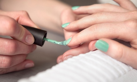 One or Three Groupons, Each Good for One Manicure and Spa Pedicure at Exquisite Effects Salon (Up to 54% Off)