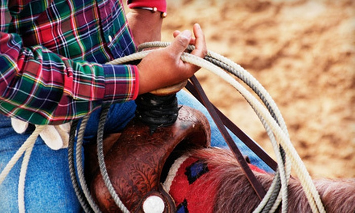 Horse Rides of Pensacola - West Pensacola: One-Hour Horseback-Riding Experience or Two-Hour Romantic Trail Ride for Two at Horse Rides of Pensacola (Half Off)