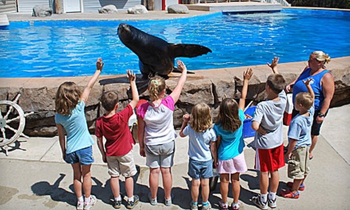 Oceans of Fun - Oceans of Fun: $49 for Hands-On Sea Lion Splash Program on Animal Training at Oceans of Fun ($100 Value)