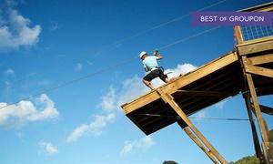 Skyline Eco-Adventures: $99 for a Skyline Kauai Tour for One at Skyline Eco-Adventures ($139.95 Value)