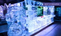 ICEBAR Experience Plus a Second Cocktail in the Warm Bar at Icebar London (39% Off)