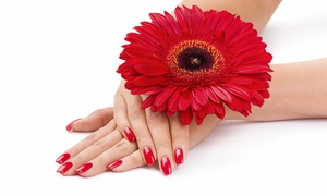 à votre beauté - Ihr Kosmetikinstitut auf der Uhlenhorst: Maniküre und/oder Pediküre bei à votre beauté - Ihr Kosmetikinstitut auf der Uhlenhorst (bis zu 52% sparen*)