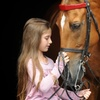 Up to 63% Off Horseback-Riding Lessons